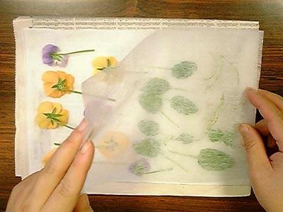 沢山の押し花を本格的に作る